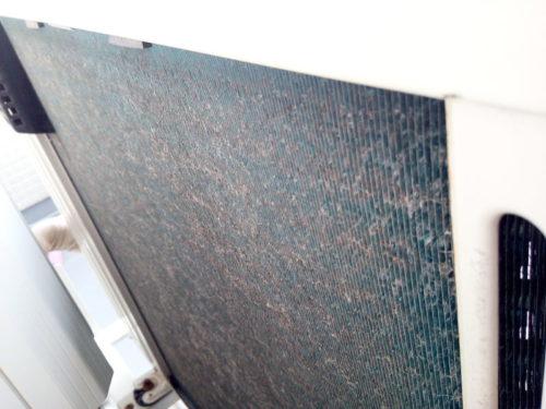 エアコン室外機の背面の汚れが原因で効かない
